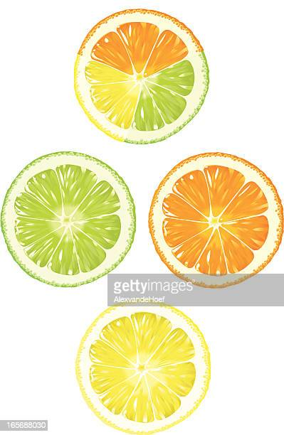Orange, Lime and Lemon