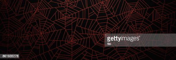 Orange Spider Web Background