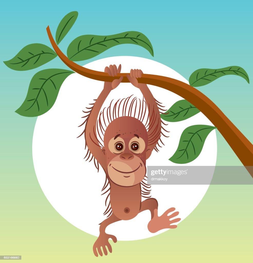 Orangutan : Vector Art