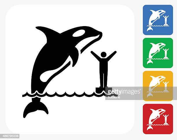 orca icon flat graphic design - killer whale stock illustrations, clip art, cartoons, & icons