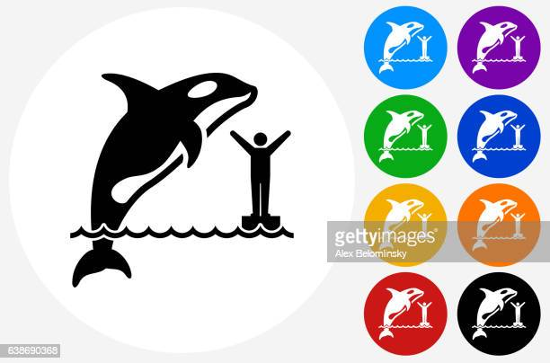 orca icon on flat color circle buttons - killer whale stock illustrations, clip art, cartoons, & icons