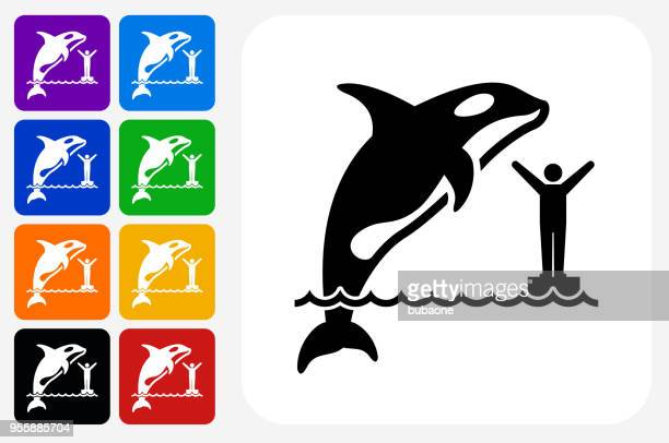 orca icon square button set - killer whale stock illustrations, clip art, cartoons, & icons