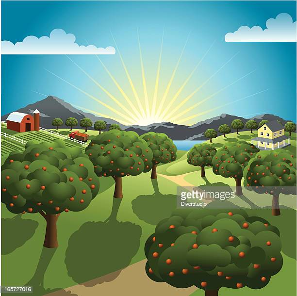 Orchard y Farm