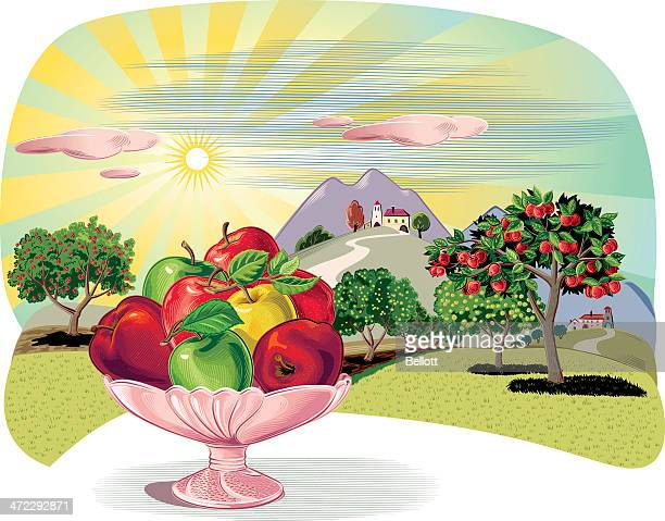 orchard with fruit dish and apples - solar flare stock illustrations, clip art, cartoons, & icons