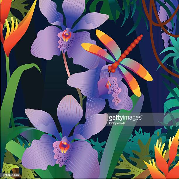 orchid und Libelle