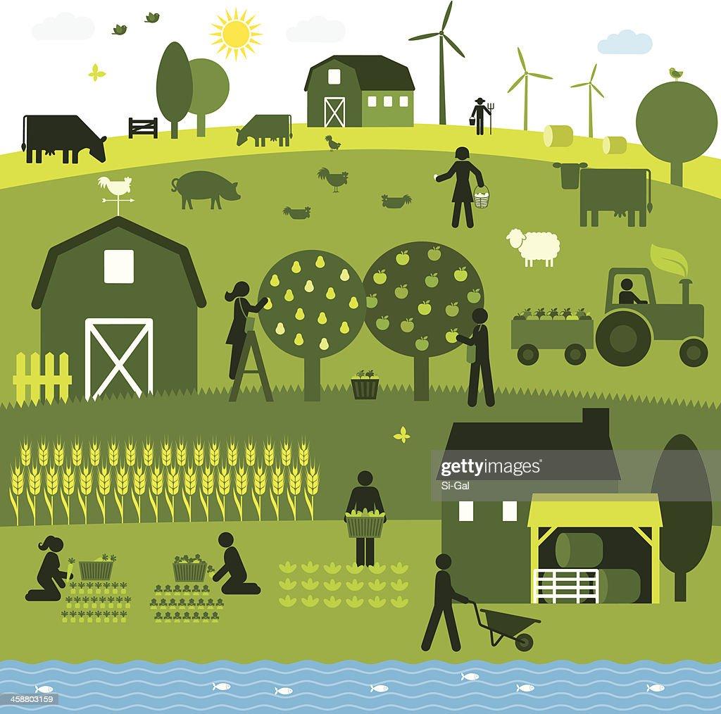 Organic Agriculture : Illustrationer