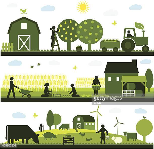 organic agriculture - tractor stock illustrations