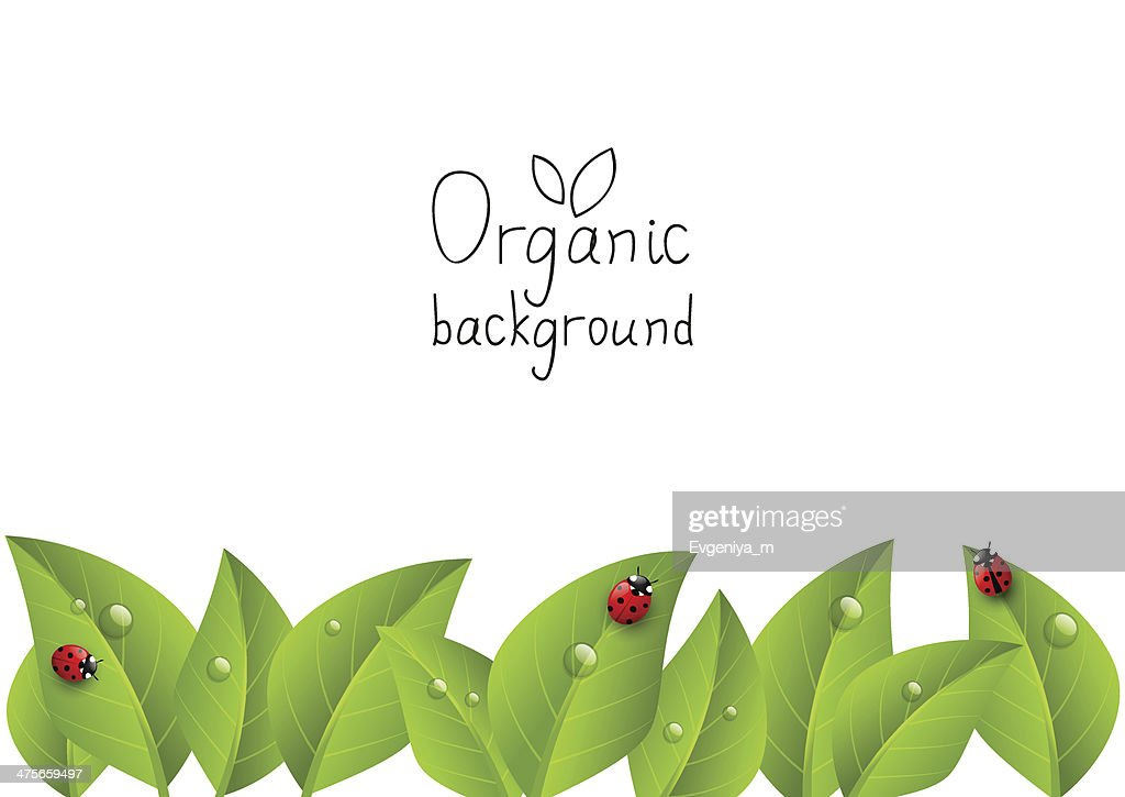 Organic background with copy space