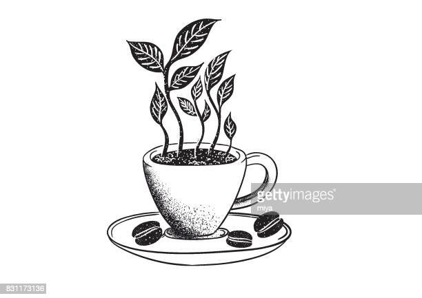 organic coffee - bean stock illustrations