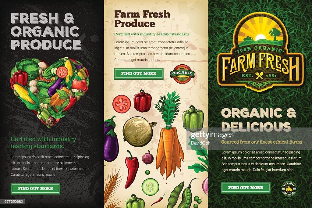 Organic Farm Fresh Web Banner Set : stock illustration