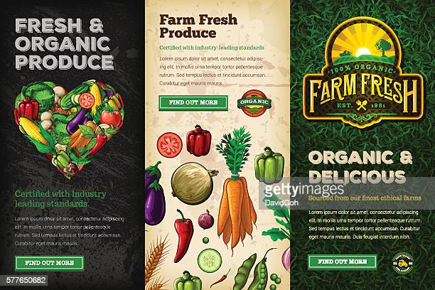 organic farm fresh web banner set - organic stock illustrations, clip art, cartoons, & icons