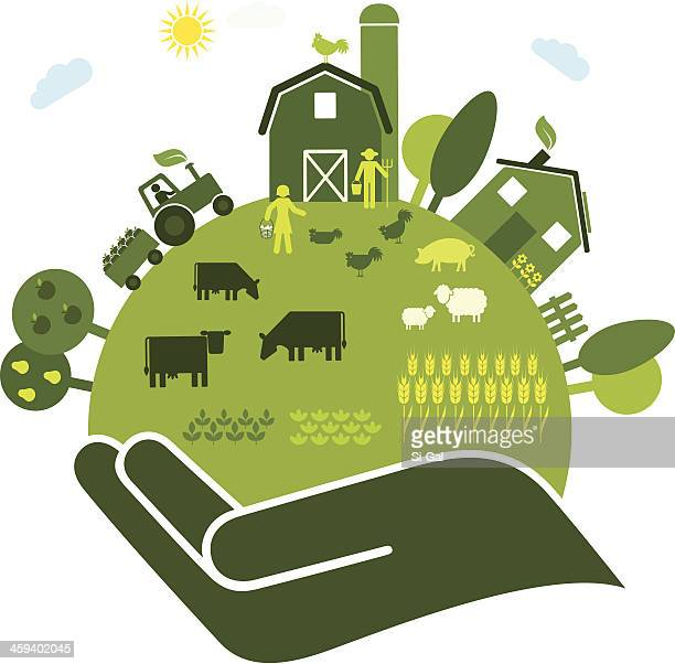 organic farming - organic farm stock illustrations