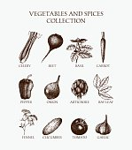 Organic food illustration set