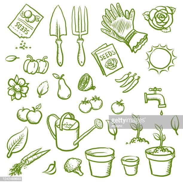 stockillustraties, clipart, cartoons en iconen met organische het tuinieren pictogrammen - plant
