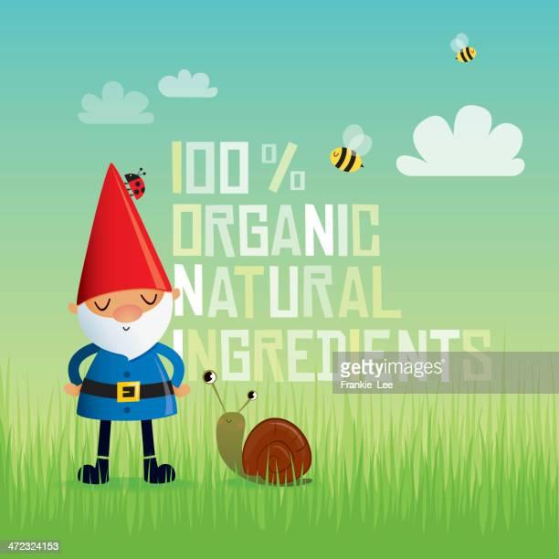 illustrations, cliparts, dessins animés et icônes de nain de bio - coccinelle