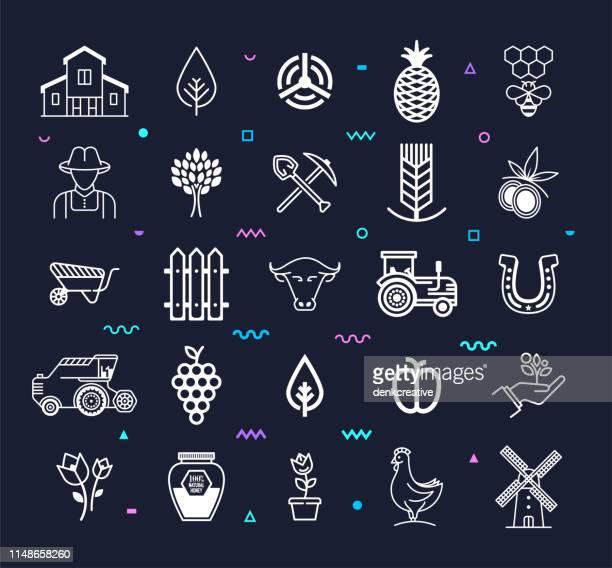 ilustrações, clipart, desenhos animados e ícones de orgânico & mais saudável linha de alimentos estilo vector icon set - produto local