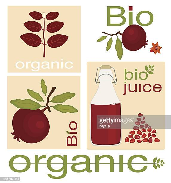 organic pomegranate fruit - marmalade stock illustrations, clip art, cartoons, & icons