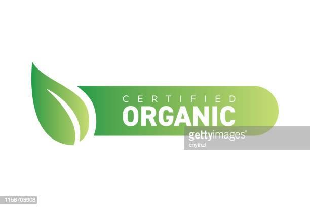illustrations, cliparts, dessins animés et icônes de bannière de produits biologiques - insigne