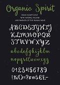 Organic spirit vector brush script alphabet