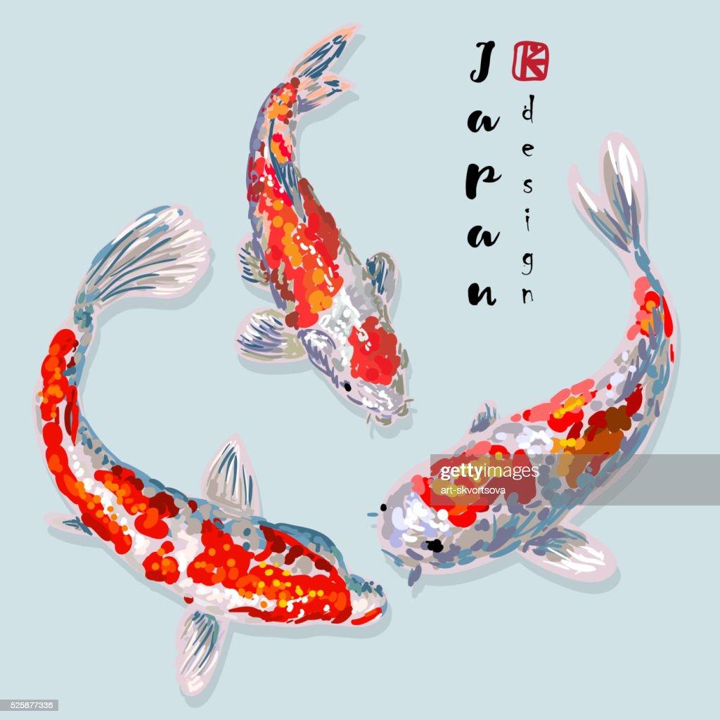 Oriental rainbow carp set