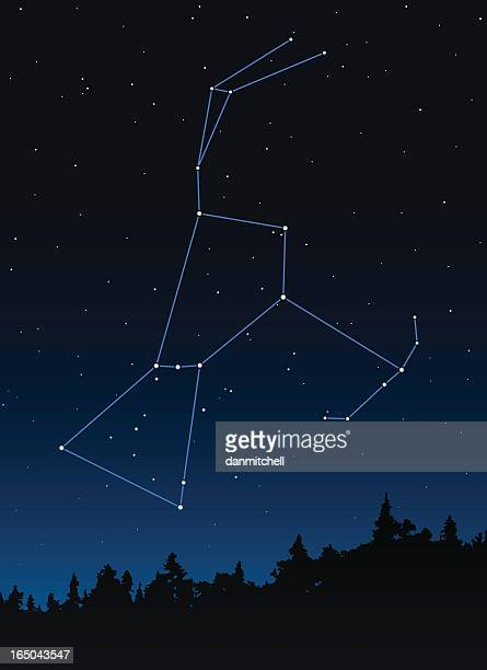 Orion (der Hunter) Constellation