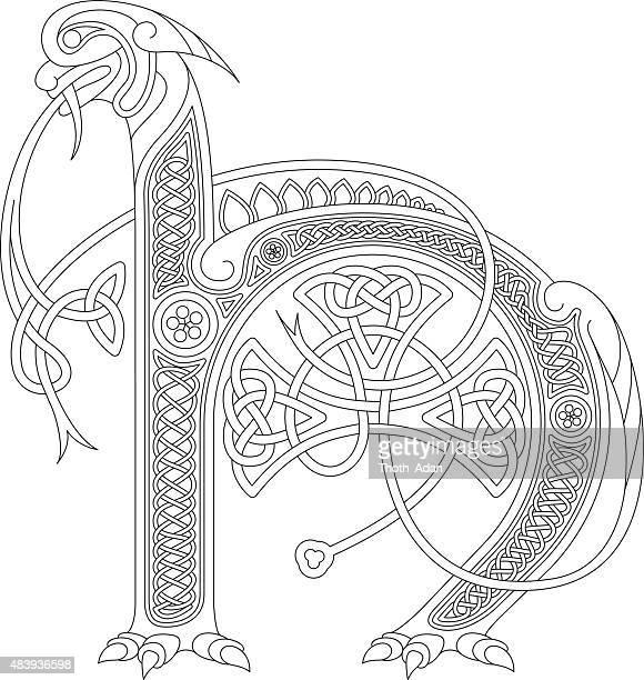 ornamental celtic ersten s drawing (animal mit endloser knoten - book of kells stock-grafiken, -clipart, -cartoons und -symbole