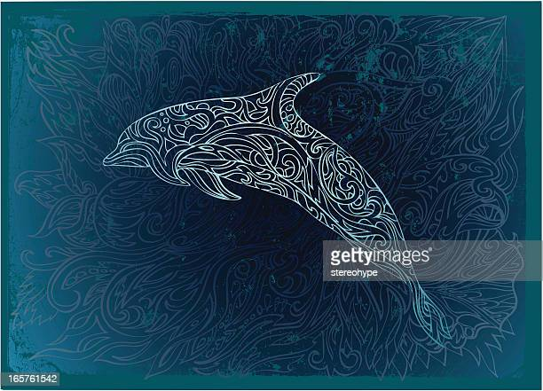 ornate dolphin