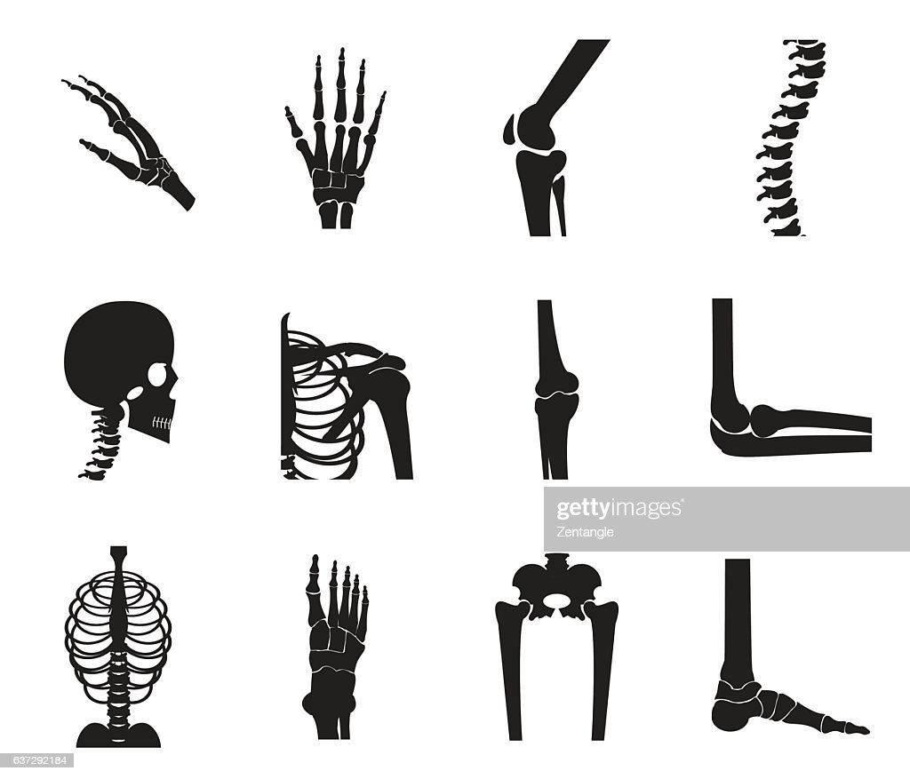 Orthopedic and spine icon set on white background
