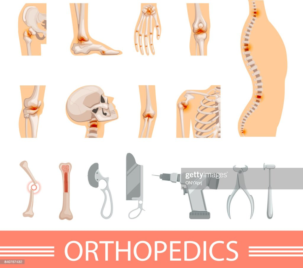 Orthopedic Icons Set Human Skeleton Bones And Different Medical