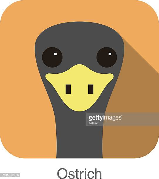 ostrich flat icon, vector illustration - ostrich stock illustrations, clip art, cartoons, & icons