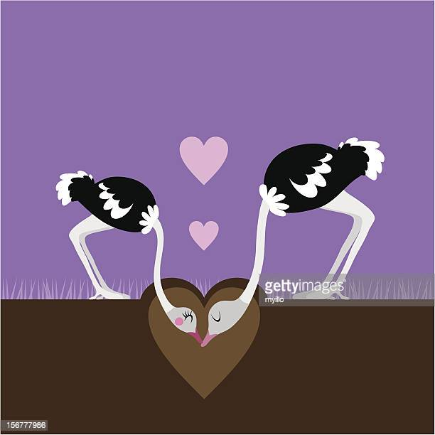 ostrich love - ostrich stock illustrations, clip art, cartoons, & icons