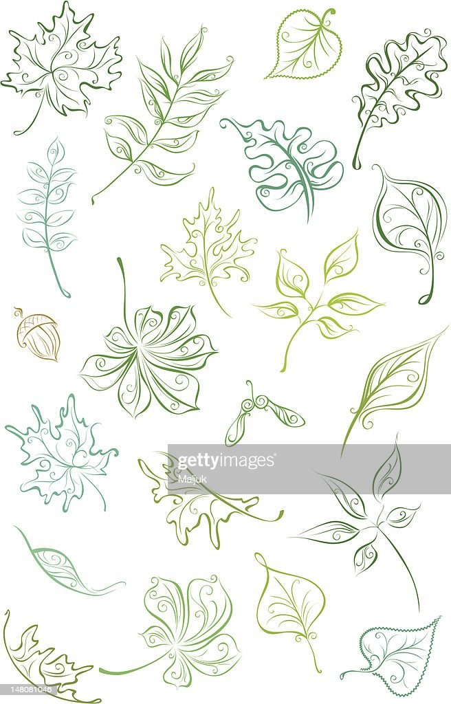 Outline leaves