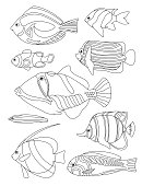 Outlined coral fishes horizontal coloring page. Tropical fish coloring card.