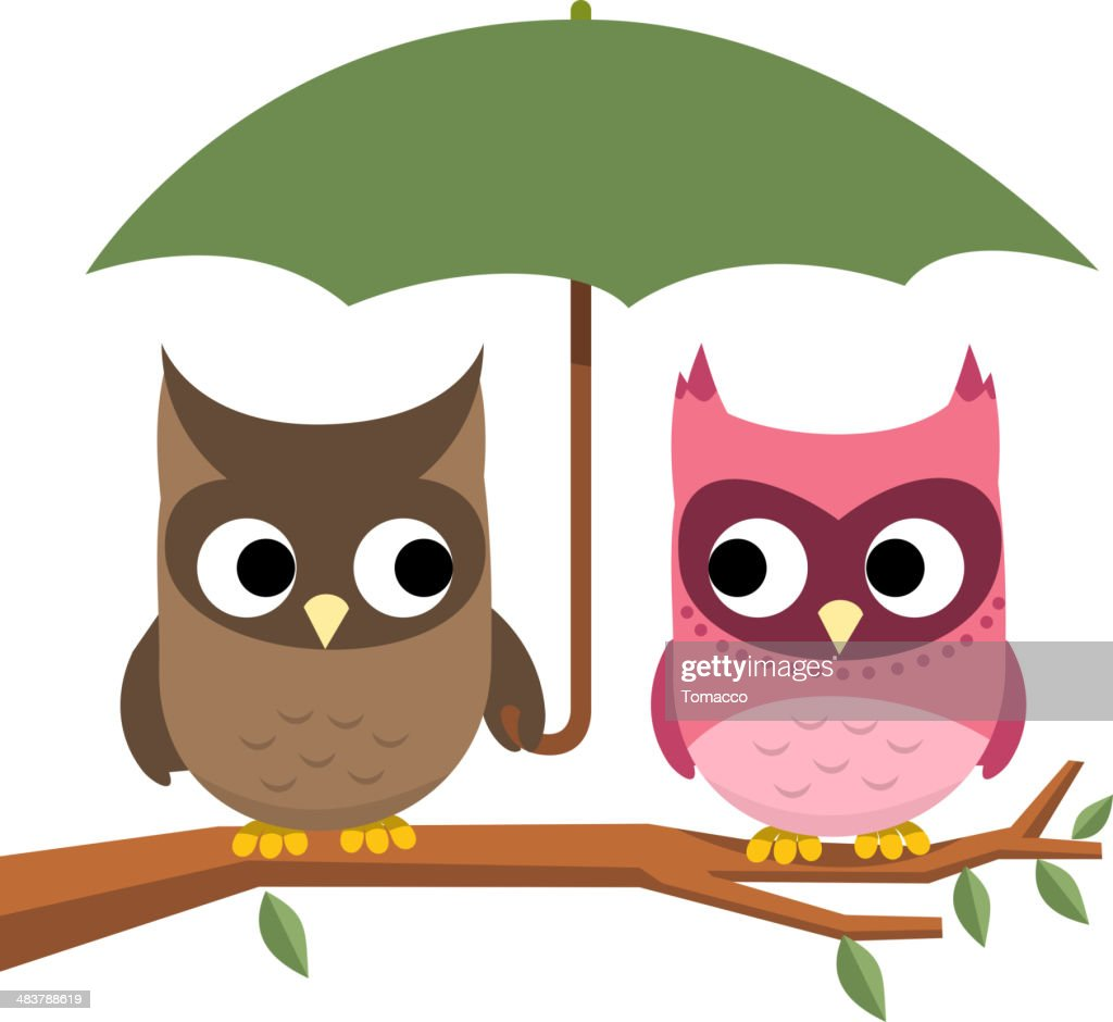 Owl couple perching under Umbrella
