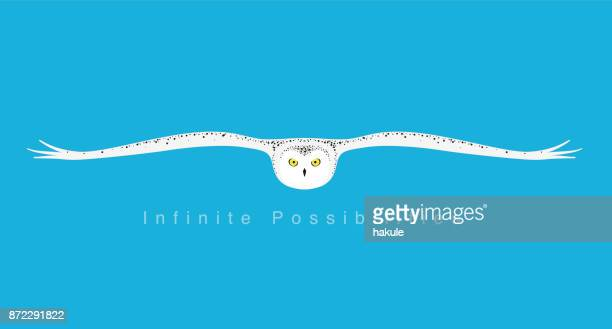 owl expanding wings, flying to you, flat icon simple design, vector illustration - owl stock illustrations