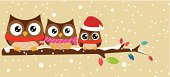 owl family on the branch christmas banner