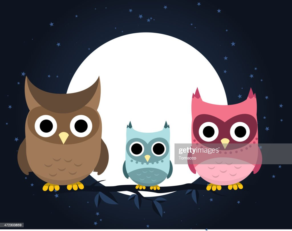 Owl family perching at night
