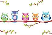owl five