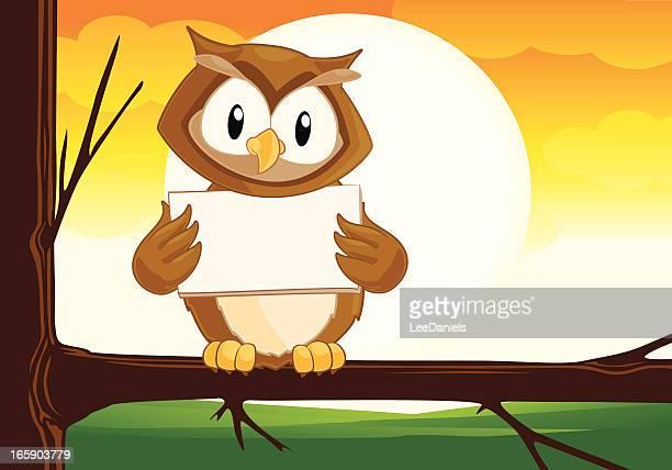 Owl banner getty images voltagebd Images