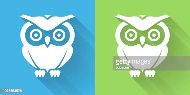 owl icon with long shadow - owl stock illustrations