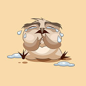Owl is crying