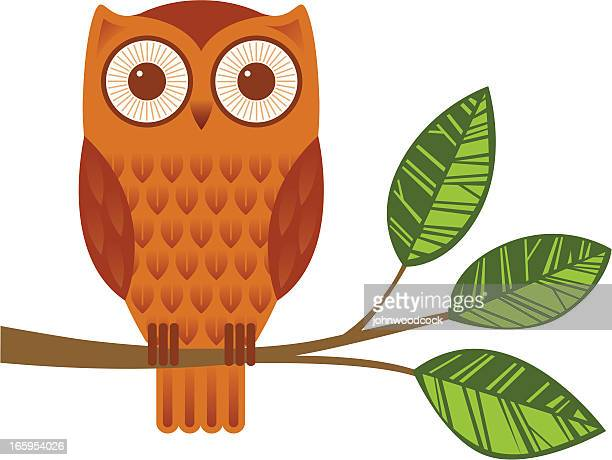 owl on a branch - owl stock illustrations, clip art, cartoons, & icons