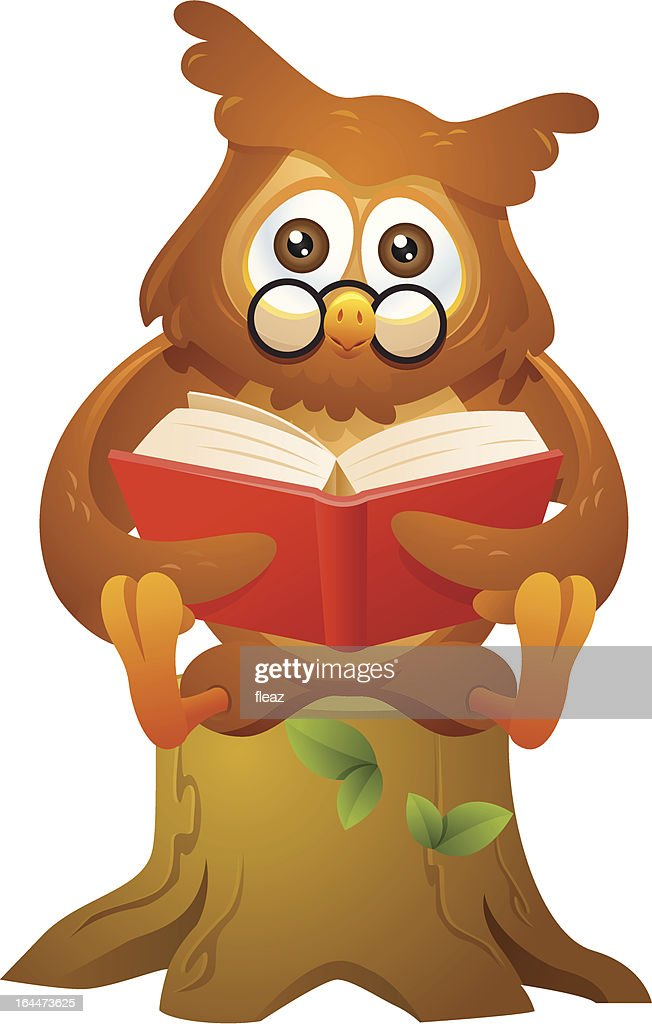 owl - reading book while sitting