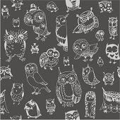 Owl seamless background. Monochrome. Hand drawn vector illustration.