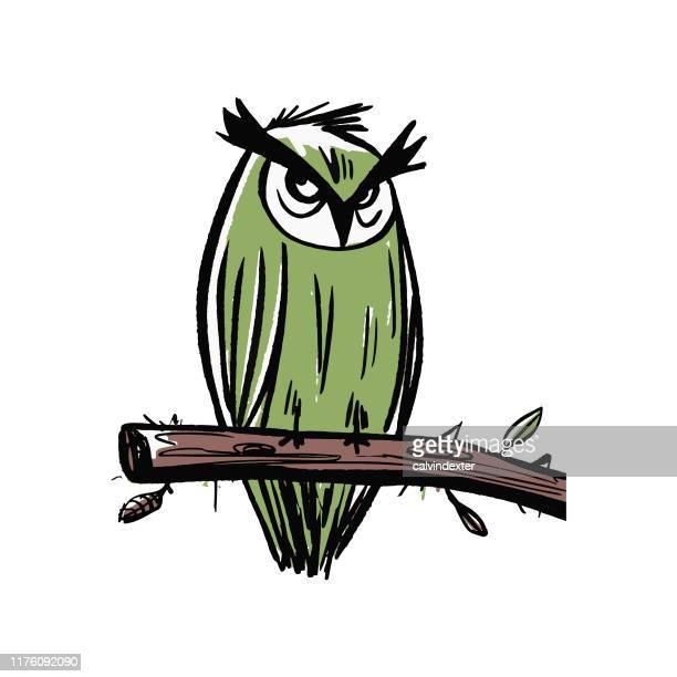 ilustraciones, imágenes clip art, dibujos animados e iconos de stock de búho sentado en un dibujo a lápiz de rama - aire libre