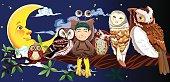 Owl Story