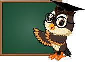 Owl teacher at blackboard