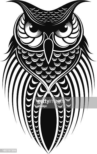 2 937 Iillustrations Cliparts Dessins Animes Et Icones De Hibou Getty Images