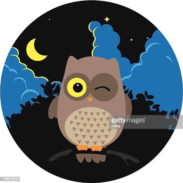 illustrations, cliparts, dessins animés et icônes de chouette - hibou grand duc