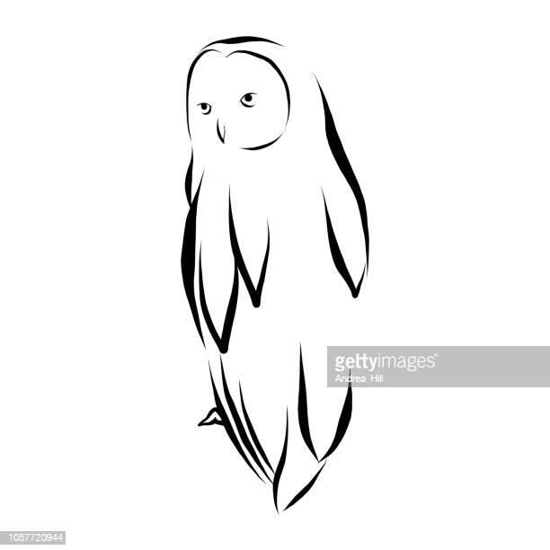 illustrations, cliparts, dessins animés et icônes de illustration vectorielle hibou en plume et encre isolée on white - chouette